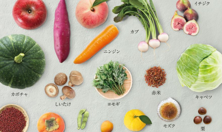 ととのうみすと 65種類の植物酵素